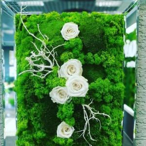 machovy obraz s eterno kvetmi.jpg